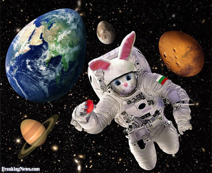 easter-bunny-in-space-123818