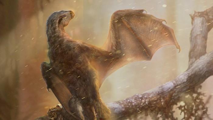 bat winged dinosaur lead_720_405